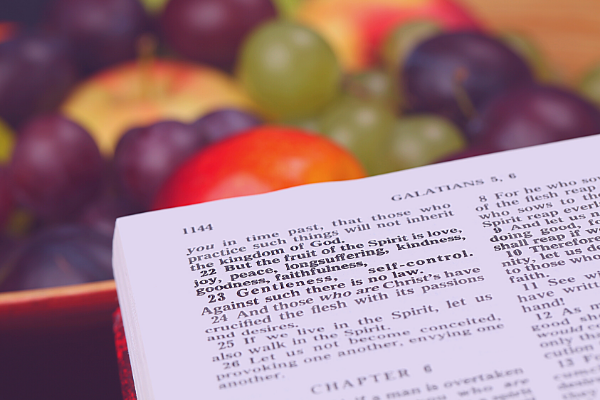 Experiencing the Power of The Fruit of The Spirit.